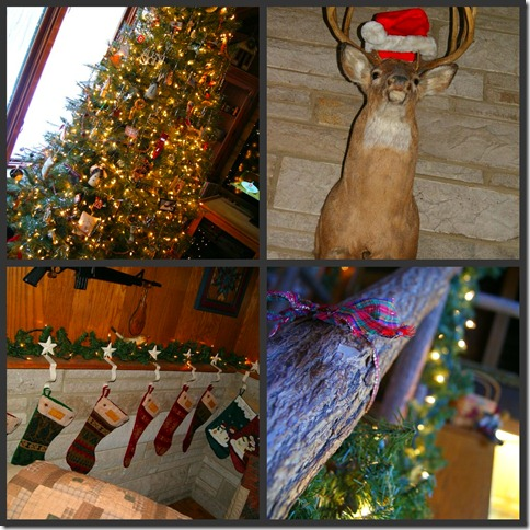 2010 Christmas collage 27