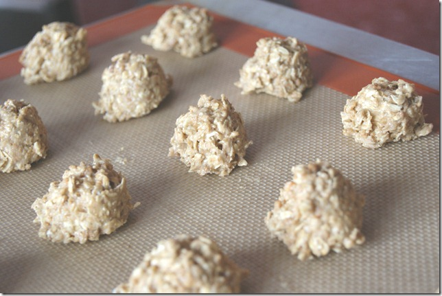 Grape Nut Cookies 004