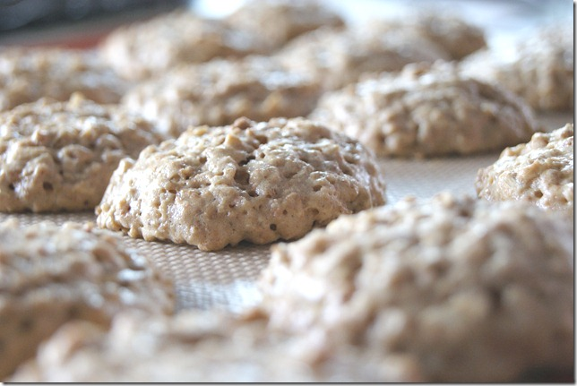 Grape Nut Cookies 007