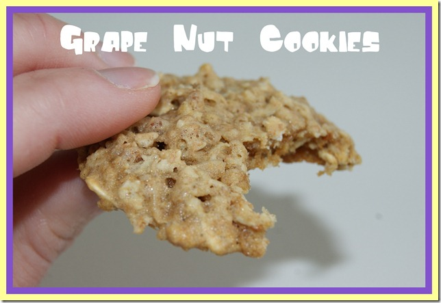 Grape Nut Cookies 51