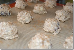 Chocolate Chip Banana Bread Cookies 011