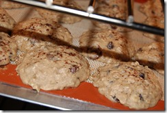 Chocolate Chip Banana Bread Cookies 014